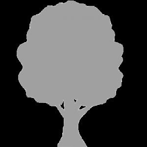 logo_albero